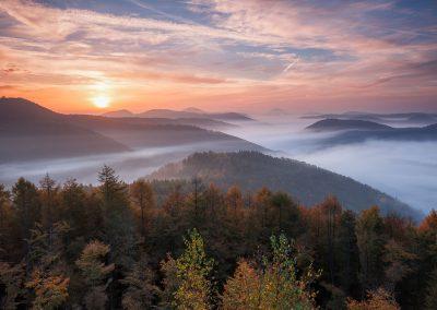Nebel am Kirschfelsen Annweiler