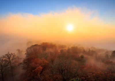 Nebelwaöd im Herbst auf dem Luitpoldturm beim Hermersbergerhof