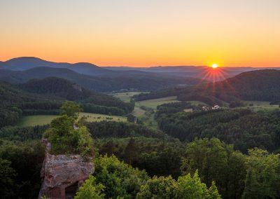 Sommer auf dem Drachenfels in Busenberg
