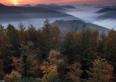 Sonnenaufgang am Kirschfelsen Annweiler