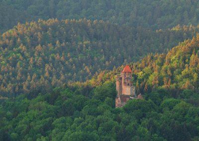 Die Burg Berwartstein im Frühling