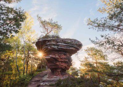 Sandsteinfelsen mitten im Pfälzerwald