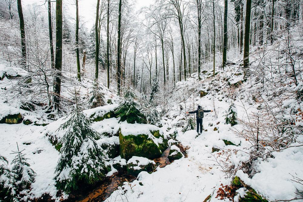 wandern_im_winterwald