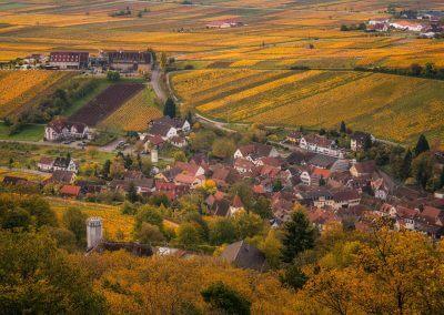 Blick auf den Slevoghof in Leinsweiler mitten im Herbst