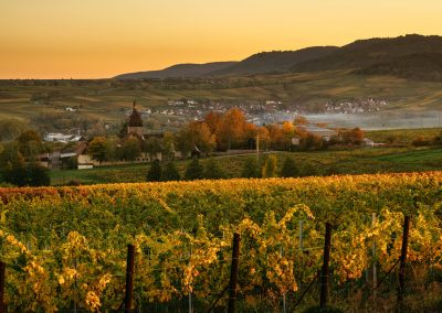 Herbstlicher Ausblick auf Siebeldingen und den Geilweilerhof