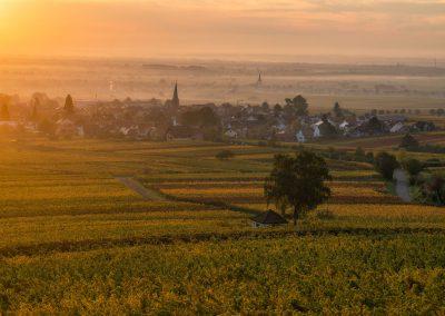Pfalz im Herbst Ausblick auf Rodth von der Villa Ludwigshöhe
