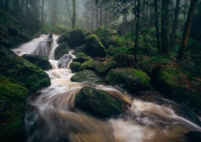 Mystischer_Schwarzwald