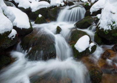 Schwarzwald versunken im Schnee